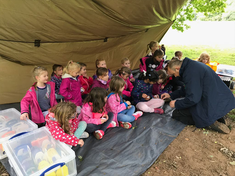 Forest School - Birthday Party