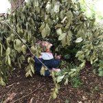 Outdoor Pre-School - Playing hide and seek