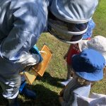 Beekeeper showing honeycomb to children
