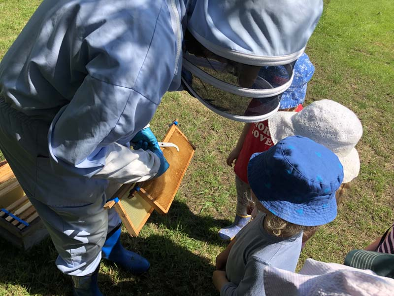 Beekeeper showing honeycomb to children
