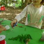 Forest School - Crafts