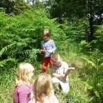 Forest School - Exploring