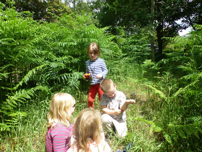 Forest School - Exploring